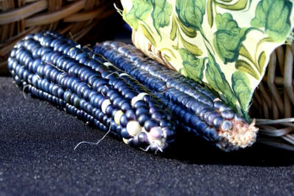 blue corn Picture